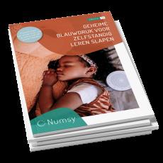 Slaapcoach e-book